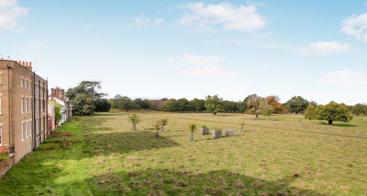 Bushy-Park